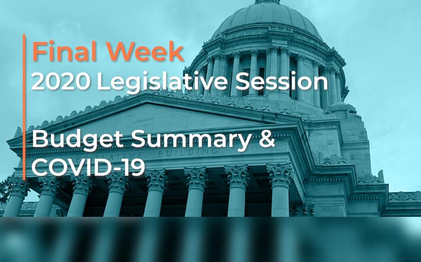 Final Week 2020 Legislative Session Budget Summary & COVID-19